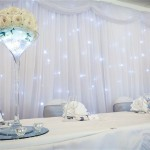 Wedding Starlight Backdrop